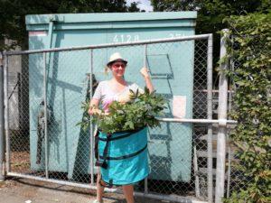 Unser Antrag: Grünschnittcontainer in den Stadtteilen